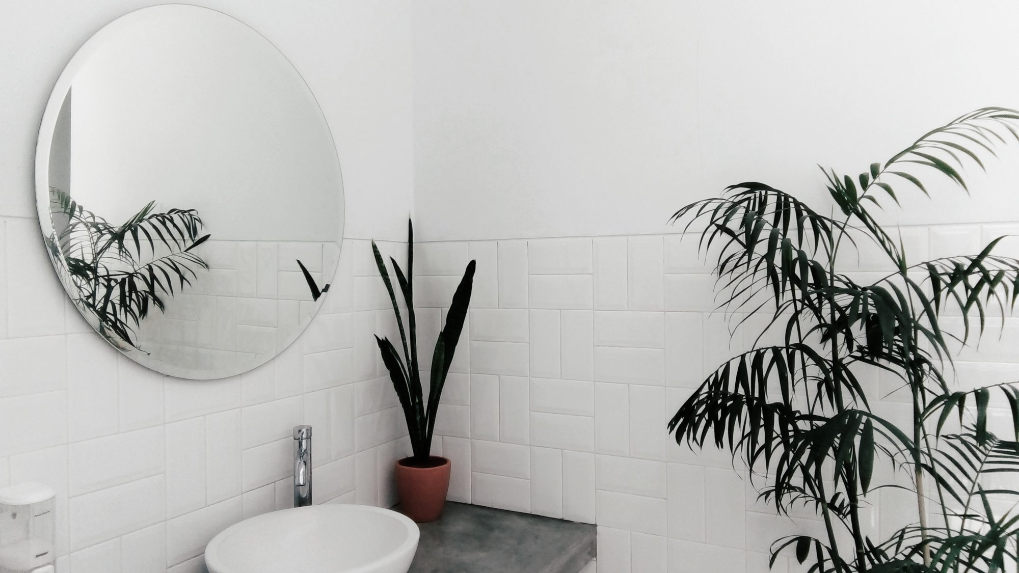 Zero Waste im Badezimmer